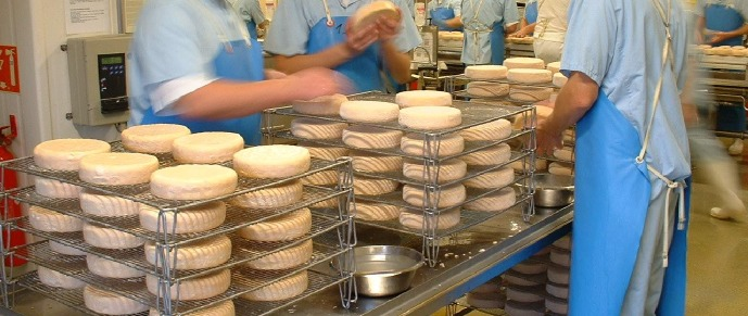 Lavage des fromages (Fromagerie Berthaut)